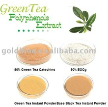 Premium Quality Green Tea Extract / Catechins Polyphenols EGCG