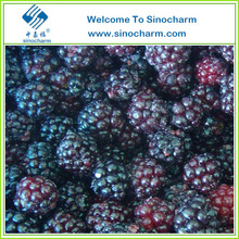Sell China Grade A Frozen Blackberry, IQF blackberry