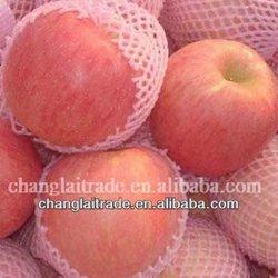qixia red fuji apple wholesale