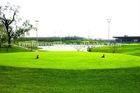 high quality golf green field