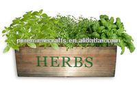 Wooden hydroponics planter --- kitchen herbs