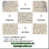 meiosis microscope slides,meiosis of animal sec.