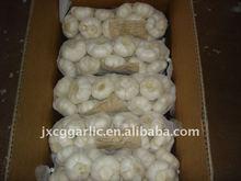 Red garlic 1kg packing