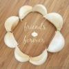 New crop! Pure White Fresh Garlic Supplier