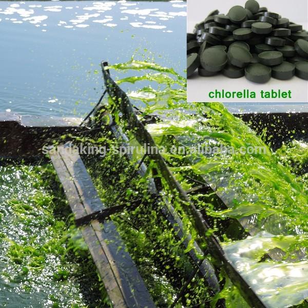 Organic chlorella tablets private label
