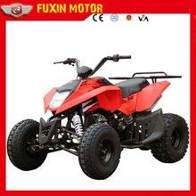 110cc automatic ATV(FXATV-003A-110FZ)