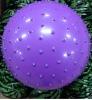 fitness massage gym ball/massage ball