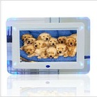 7 Inch Digital Photo Frame with LED Light 800*480 pixels Resolution