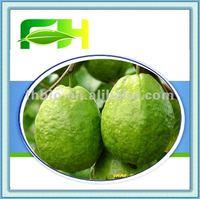 100% Natural Guava Pulp/Guava Single Puree