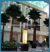 Indoor preserved washingtonia palm tree fake tropical big palm tree