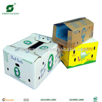 KRAFT CARTON BOXES FOR FOOD PACKAGING
