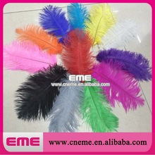 Wholesale Cheap Dyed Colorful Ostrich Feather Natural for Stage Prop Angel Wing