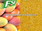 New crop iqf frozen mango dice , frozen fruit manufucture