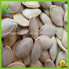 Chinese 2014 cheap shine skin pumpkin seeds