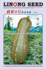 Pumpkin seeds chinese fresh seeds