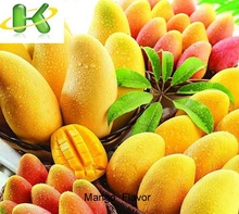 Strong R & D capacity Hot sell liquid mango flavor