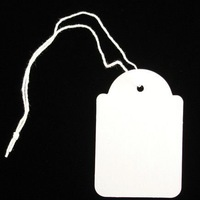 Q95 paper tag with string