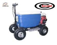 Wholesale Cheap 50CC Gas Powerful Electric Cooler Scooter for Sale SX-G110