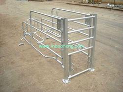 European design galvanized gestation crates