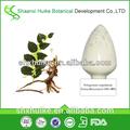 Gigante knotweed extracto resveratrol 99/bebidas resveratrol/99% resveratrol en polvo