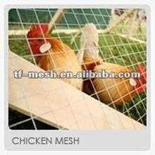 Chicken Pen Welded Wire Fencing ( Galvanized & Plastic Coated ISO 9001)