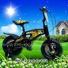 chooper bicycle /special bike