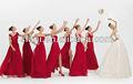 Atacado - Multi - estilo disponíveis ordem misturada lindo Chiffon vestido da dama de 2013