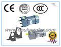 Houle 160 W motor eléctrico con reducción gear motor con bajo rpm alto par motor de inducción