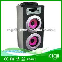 OEM fashion multimedia wooden speaker