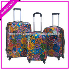 ABS PC Printed Hard Sheel Luggage/Trolley Case /Trolley Luggage