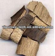 plant plant bark extractions Eucommia Bark Extract