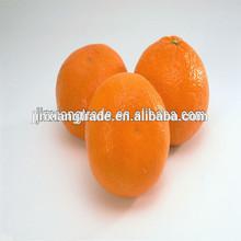 2015 Oranges Fruits Supplier