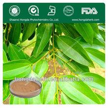 100% Natural Cinnamon bark extract powder polyphenol 30%