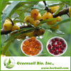 2014 SeaBuckthorn Pulp Oil softgel Seabuckthorn Fruit Oil Soft Gel