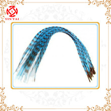 2014 HOT&Beautiful charming blue feather hair extension