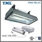 Induction Tunnel Lightings, Wattage 200W,250W,300W,400W With UL/CE/RoHS Certified