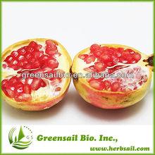 2014 High Quality Pomegranate Fruit Juice Powder
