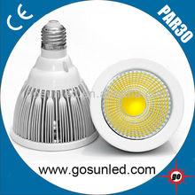 Lot size 10W PAR30 E27 COB LED Spotlight CE&RoHS in China