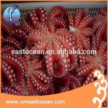 frozen seafood octopus