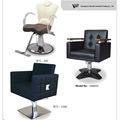 La parte superior- grado de pelo las sillas del salón para la venta