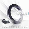 Ginseal Die-formed graphite ring