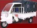 Shineray üç tekerlekli motorlu kamyon