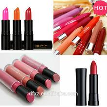 Branded matte lipstick make up