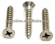 DIN 7971 / ISO 1481 stainless steel /carbon steel Slotted pan head cone end type C self tapping screws