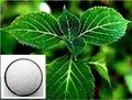 Cloridrato de yohimbina/65-19-0