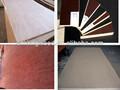 Linyi sperrholz ce qualifizierte chinesisch hochwertigen furnierholz, okoume gesicht, pappel tischlerplatten( Sperrholz Hersteller)
