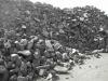 metallurgical coke/ MET COKE/ foundry coke export standard