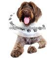collier gonflable pour chiens et chats de protection pour animaux de compagnie collier
