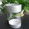 kunststoffzylinder container mit papier caps