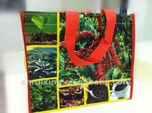 Lamination PP Woven photo print bag